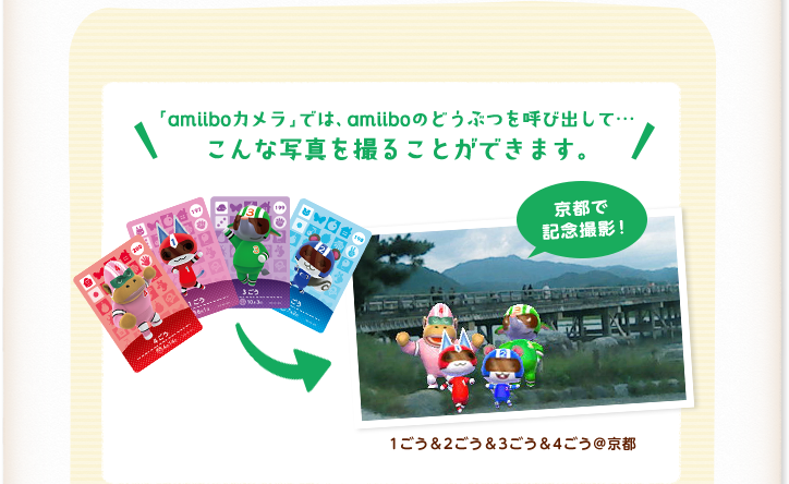animal crossing new leaf amiibo camera
